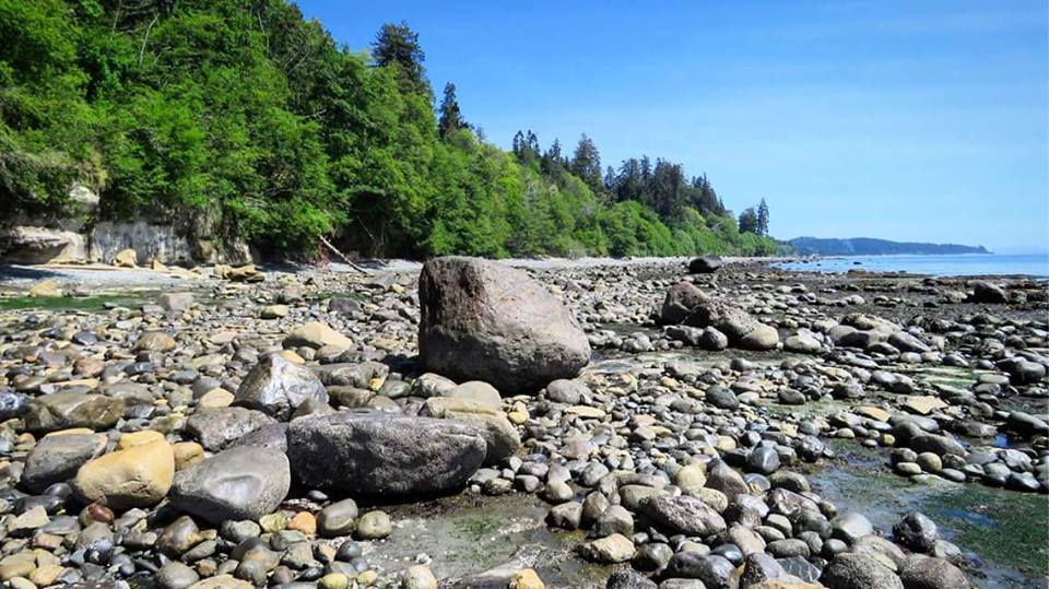 Rocky-beach-at-Muir-Creek-from-Jamie-Kitto-1